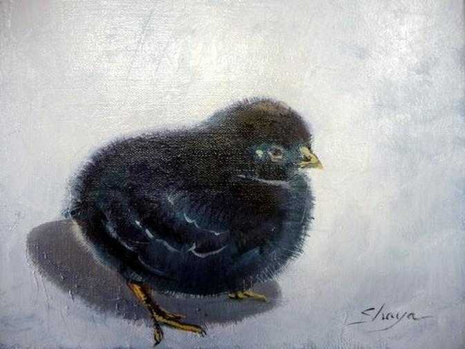 poussin noir peinture à l huile